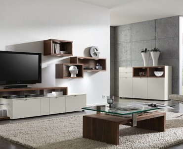 Toons Top Picks For a Contemporary Living Room